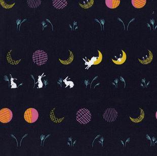 Bild av 1912-2 Moonbunnies Rashida Coleman-Hale