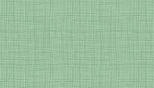 Bild av Linea 1525 T Lichen