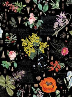 Bild av Black Floral Digital Collection