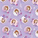 Bild på Pastel Lavender Sofia the First Floral Frames 85380102-2