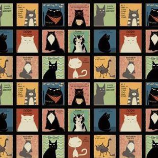 Bild av Snarky cats/ katt  panel