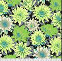 Bild på  PWPJ096.CONTRAST Cactus Flower Philip Jacobs