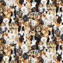 Bild på Packed Realistic Dogs C8553-MULT